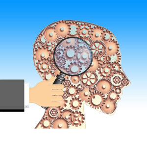 Nouveau leadership et neurosciences